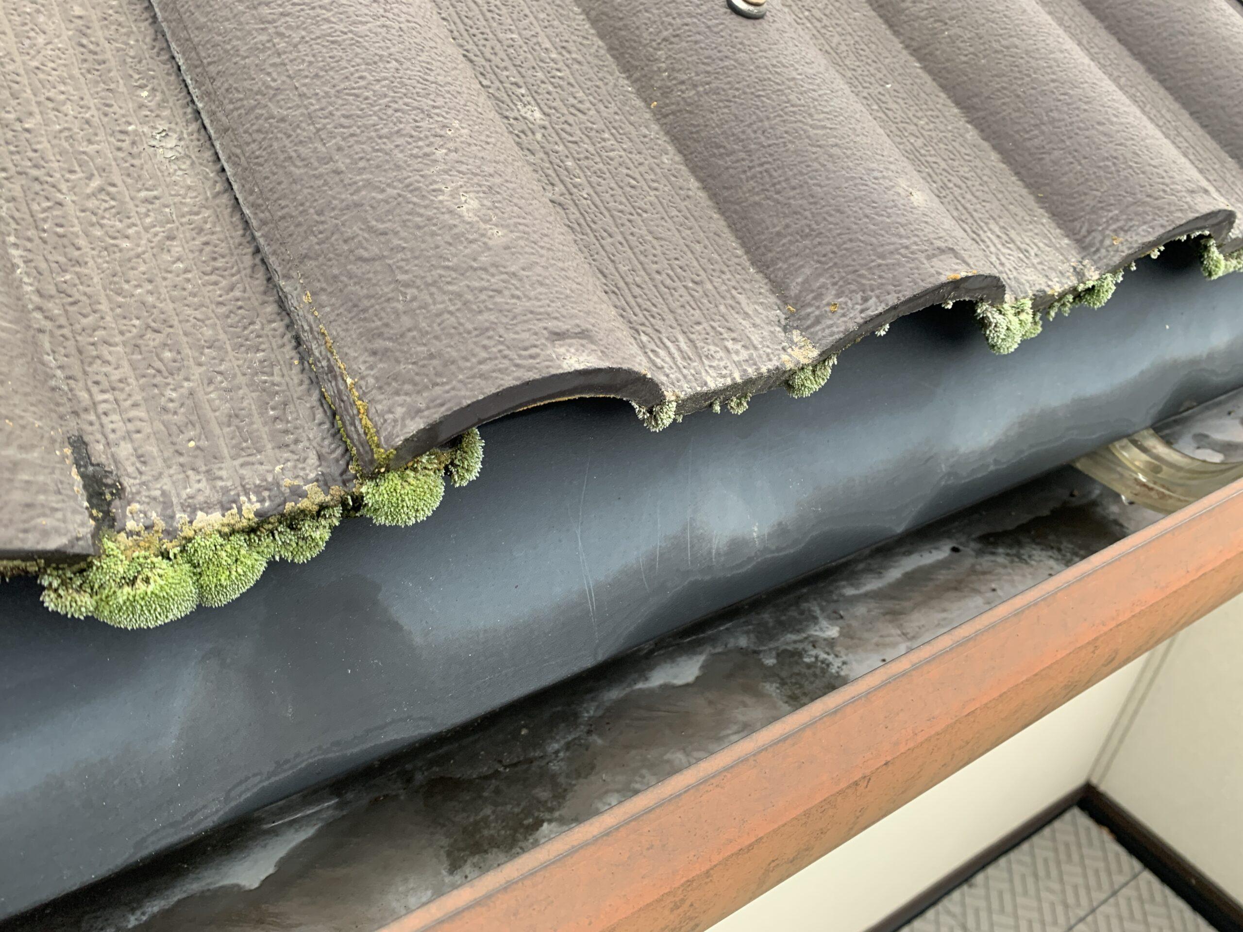 屋根塗装 洋瓦 苔 カビ