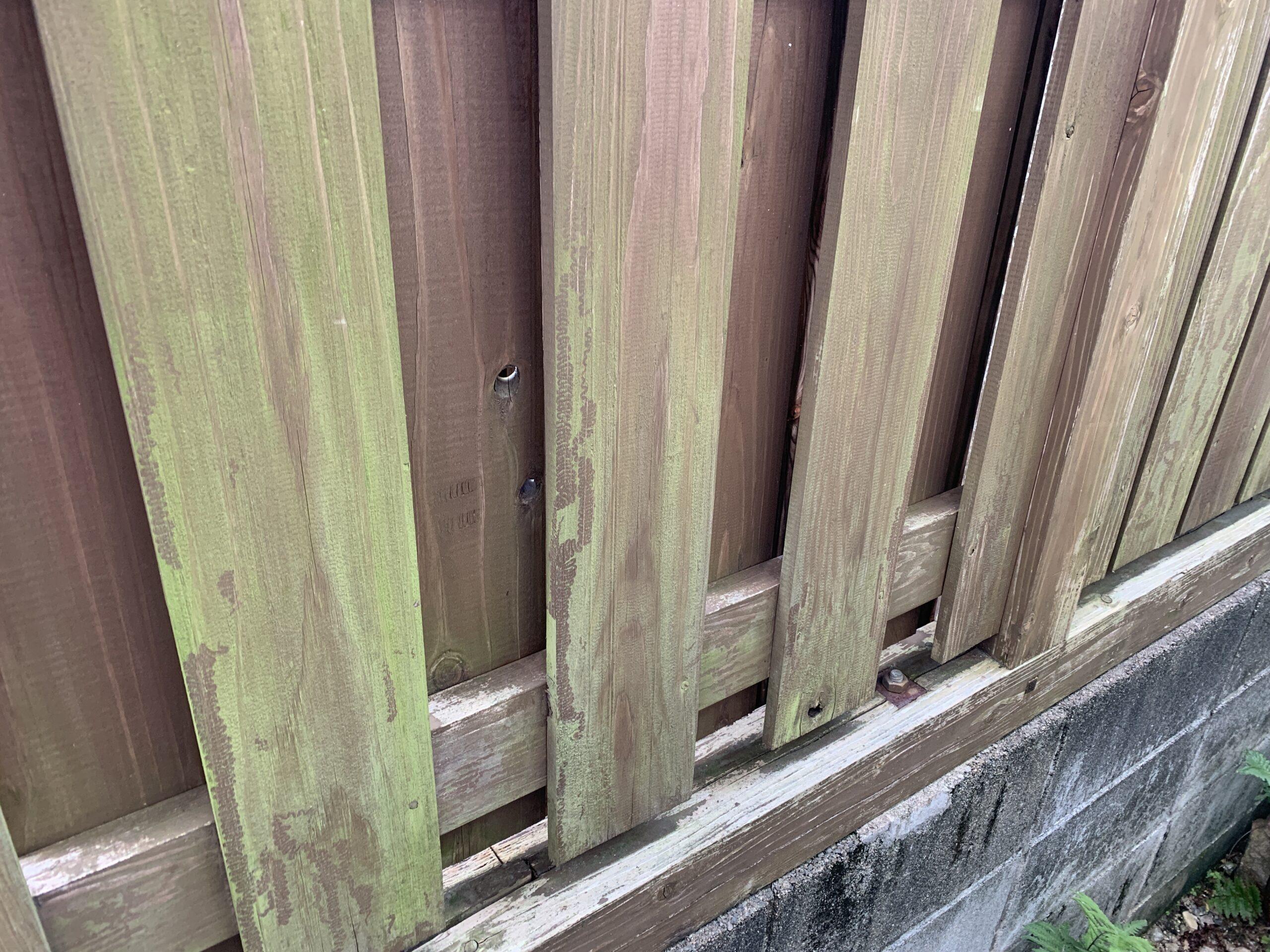 佐賀市 外壁塗装 サニー建設商事 サニケン さにけん