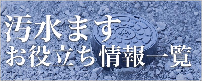 佐賀市でクリーンますの清掃